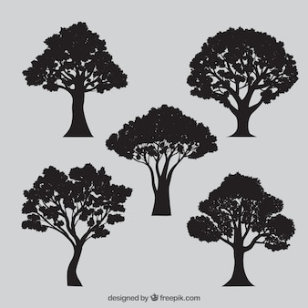 variety of tree silhouettes