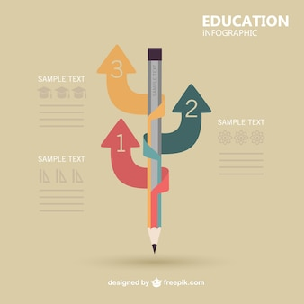 Vector infography education design