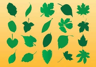 Vector Leaf Silhouette Art