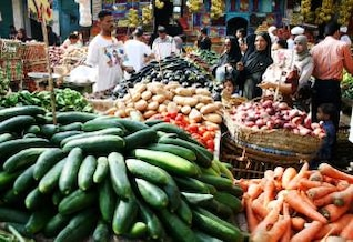 vegetable market  zucchini