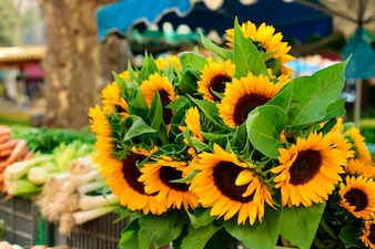 Village market with sunflowers