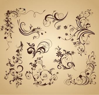 Vintage flowers design vector graphics