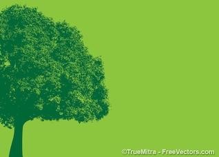 VIntage tree green banner
