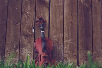 木製の柵に横たわっている緑の草の上にバイオリン