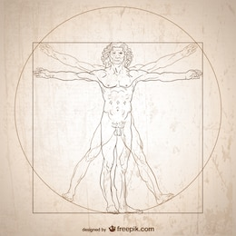 Vitruvian man vector.