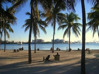 Water skyline miami ocean beach florida