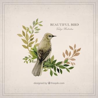 Watercolor beautiful bird