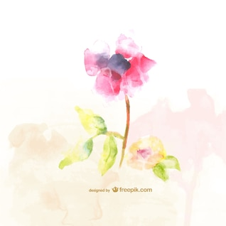Watercolor flowers free illustration
