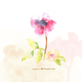 Watercolor flowers free illustration