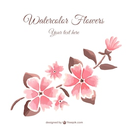 Watercolor style flowers