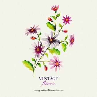 Watercolor vintage flower