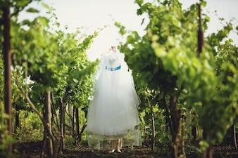木からぶら下がっウェディングドレス