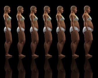 Weight evolution