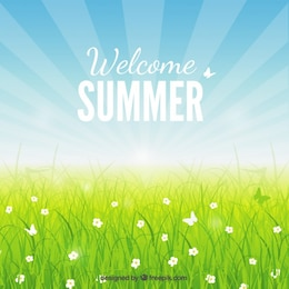 Welcome summer background