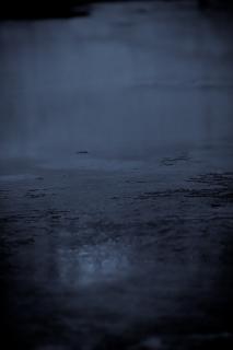 Wet floor, light