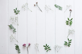 White boards with floral frame