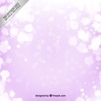 White flowers on purple background
