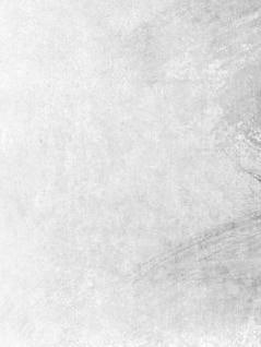 White Grunge Texture, wall