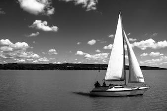 White sail in the sea