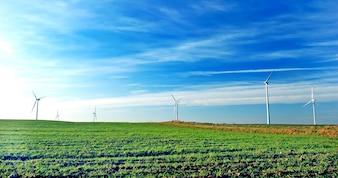 Wind farm fans