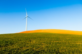 Wind turbine in a green field