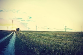 Windmills on the field.