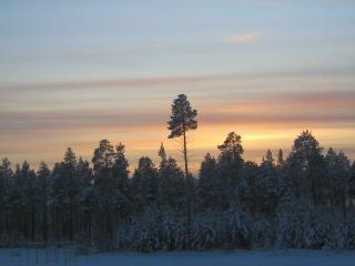 Winter , winter