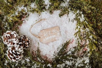 Winter composition with tag between fir branches