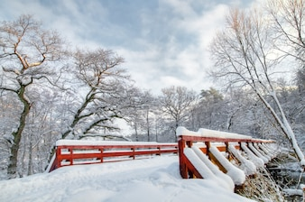 Winter landscape with a snowy bridge