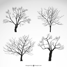 Winter trees silhouettes