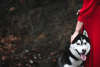 Woman in a red dress and a husky