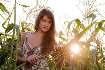 トウモロコシ植物の女性