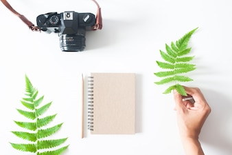 Woman's hand with fern leaf, camera, notebook and pencil, flat lay isolated on white background