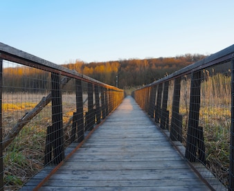 Wood bridge, vanishing point perspective