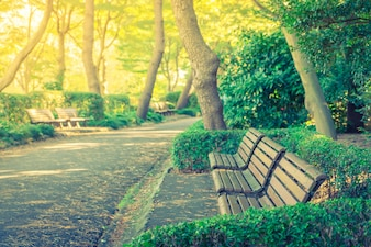 Wooden bench in the park ( Filtered image processed vintage effe