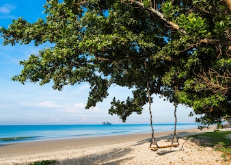 Wooden swing on a tree on a tropical beach