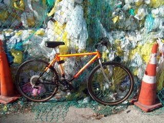 World Rider - Mountain Yak, cycle