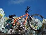 World Rider - Mountain Yak, orange