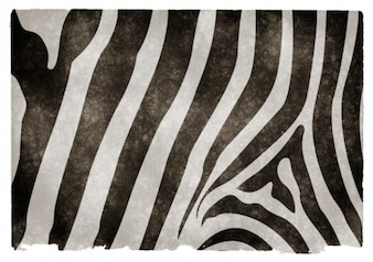 Zebra striped grunge texture