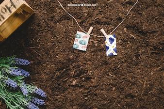 Садоводческий макет с маленькими карточками на линии