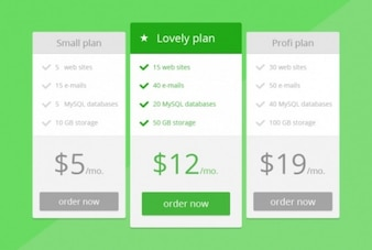 Green price table in flat design