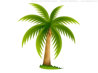 Palm tree, PSD web icon