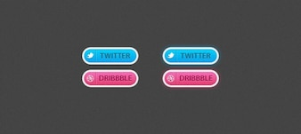 2 Social buttons (Twitter & Dribbble)