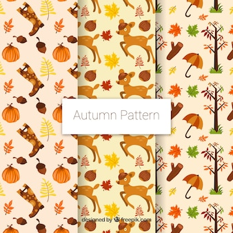 3 cute patterns with autumn items