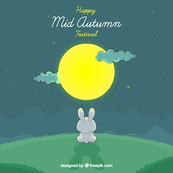 A rabbit, mid autumn festival