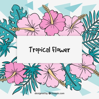 Abstract background with hand drawn tropical flowers