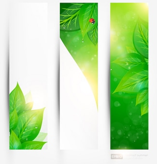 Abstract transparent banner background ecology