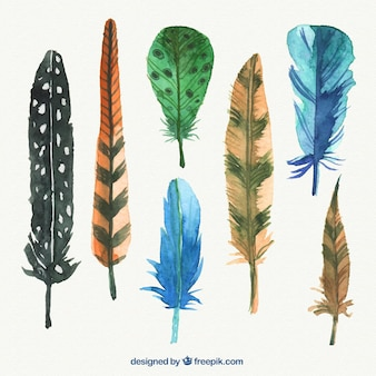Abstract watercolor feathers pack