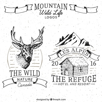 Adventure drawn logos