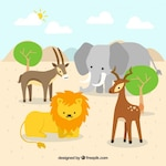 African animals together